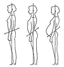 schéma changements d'équilibre des femmes enceintes